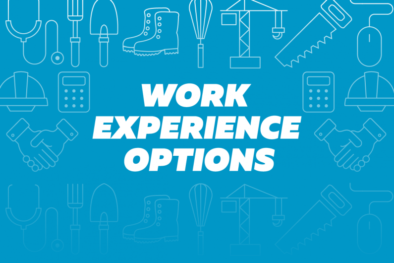 2oa3 Work experience options
