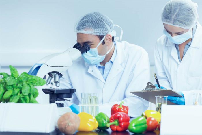 Food Technologist