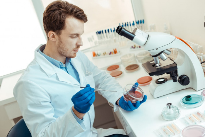 Microbiologist seated in a lab experimenting with micro-organisms in a petri dish