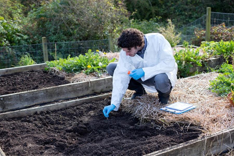 A man gathers soil for a test
